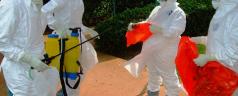 Ebola: Fausse Alerte, « Pas D'Ebola Au Rwanda »